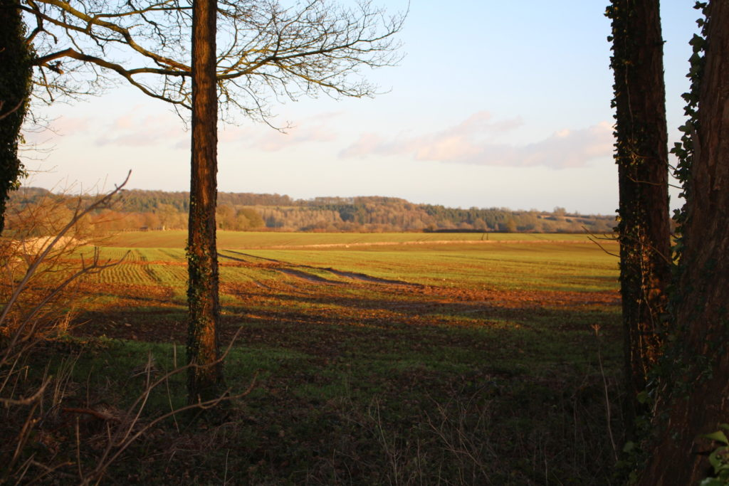 View in the parish across farmland to woods