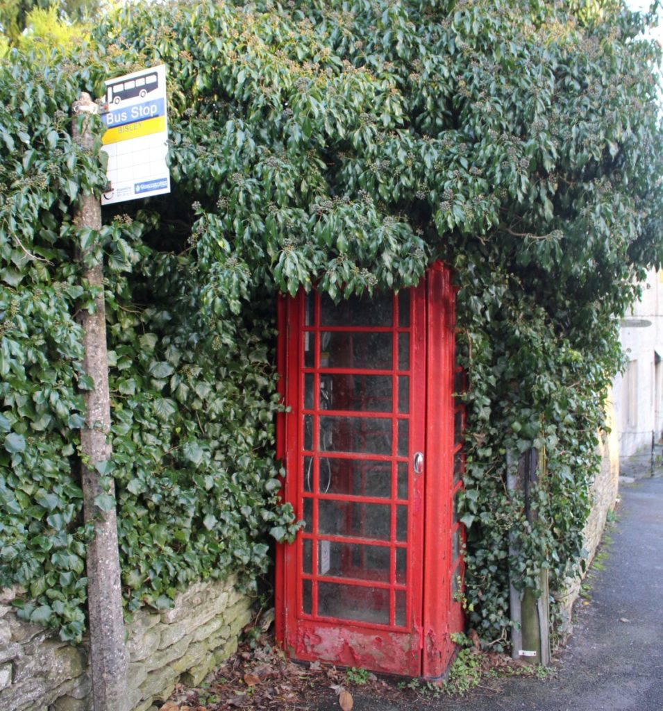 Ivy-clad phone box at a bus stop in the parish